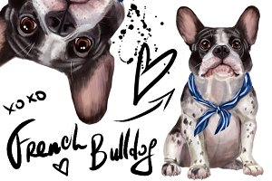 Set French Bulldog.