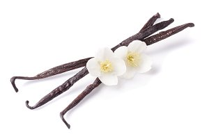 Vanilla sticks with flower isolated on white background