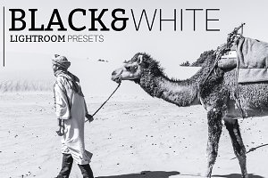Black&White - Lightroom Presets