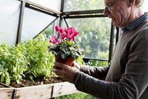 Gardening activity