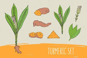 Turmeric set​ and seamless pattern