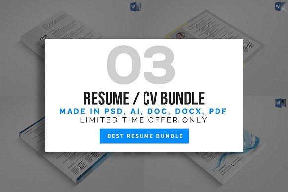 3 Clean Resume Cv Bundle