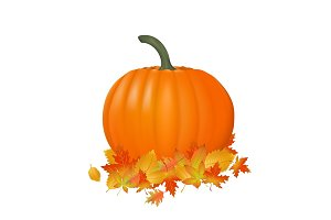 Pumpkin realistic illustration. Fresh and orange vegetable with autumn leaves