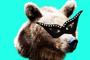 Masquerade Bear. Funny art.