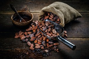 Cocoa powder in bowl and cocoa beans