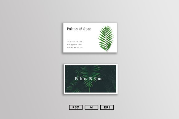 Palms And Spas Business Card