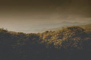 Earthy North Carolina Mountains