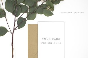 Card Mockup Styled Stock Photography