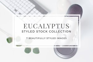 Eucalyptus Styled Stock Collection