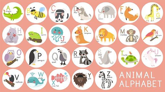 Animal Alphabet Vector