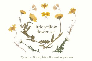 yellow flower set (all-in-one)