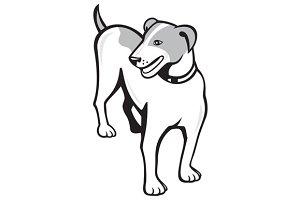 Jack Russell Terrier Standing Cartoo