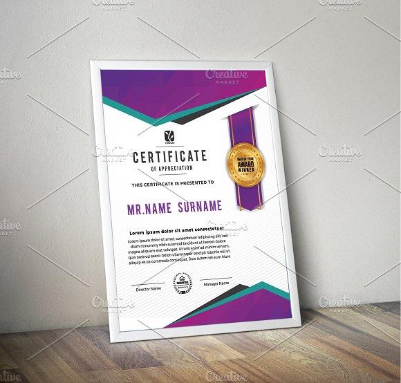 Vertical Multipurpose Certification