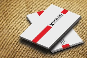Corporate Business Card SE0254
