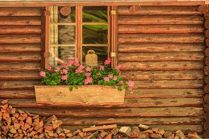 Small wooden cottage with window