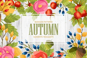 Autumn set. Vector illustration