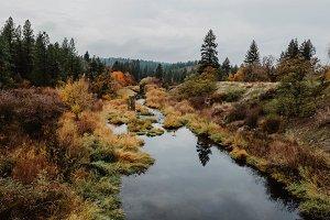 Fall Autumn River Creek