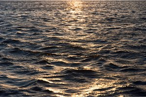 Waves of water reflecting the sunset