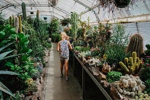 Admiring Cacti and Succulents