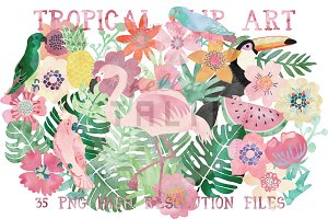 Watercolor Tropical Clipart