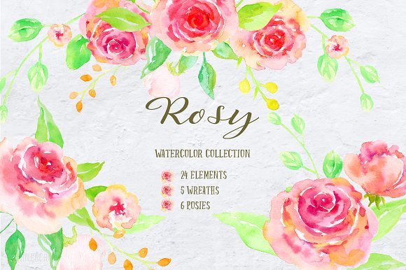 Watercolor Collection Rosy