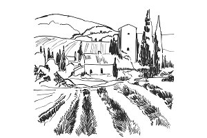 Vector illustration landscape nature with agrarian fields. Sketch