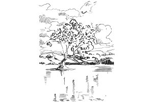 Landscape sketch. Tree near the lake