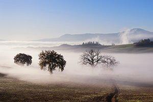 Tuscany valley panorama