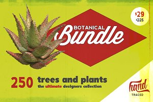 Botanical Bundle - 250 Plants *SALE*