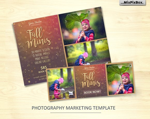 Fall Mini Session Photo Template V.2