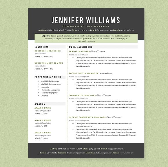 professional resume template pkg resumes