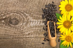 Sunflower seeds and flower on wooden background with copy space for your text. Top view