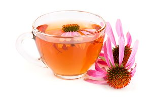 Echinacea tea isolated on white background. Medicinal tea
