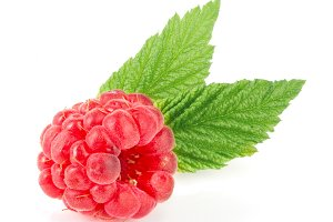 One raspberry with leaf isolated on white background macro