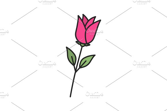 Rose Flower Color Icon
