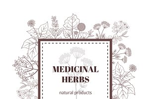 Medicine herbs background