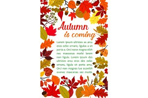 Autumn fallen leaf poster with fall nature frame