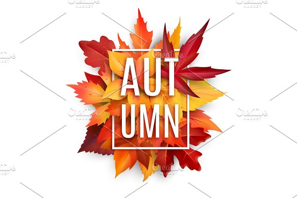 Autumn Leaf Poster With Fall Season Foliage