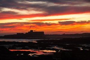 Essaouira Fort Sunset