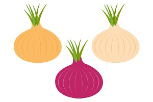 Onion ripe bulb set