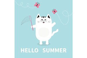 Hello summer. Cat, butterfly, net
