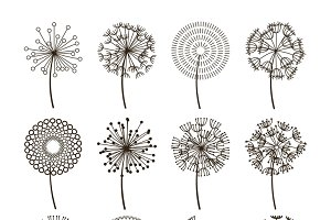 Dandelion flower icons