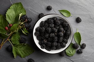 Bowl of fresh ripe blackberries