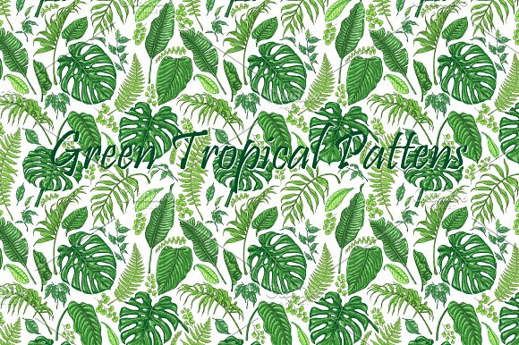Green Tropical Patterns