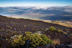 West coast of Maui
