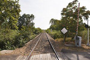 Perspective view of railroad running far away among green trees in sunlight. Horizontal studio shot.