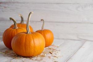 Orange halloween pumpkins