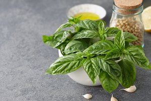 Basil pesto sauce ingredients