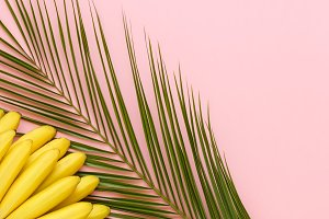 Ripe bananas on a palm leaf on a bright pink background top view