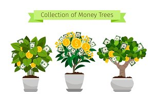 Money tree in flower pot set